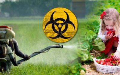 Agrotóxicos: um parecer sobre efeitos nocivos e uma crítica sobre métodos de descontaminação