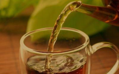Chá Verde, Resistência a Insulina & Função Cognitiva